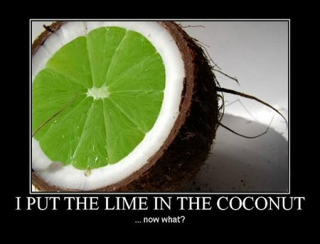 Put the Lime in the Coconut